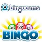 Bingocams online