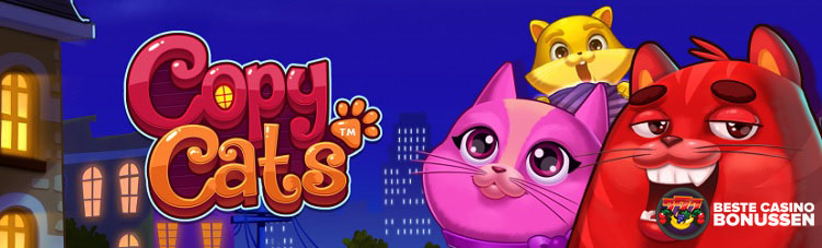 Copy Cats bonus Polder Casino