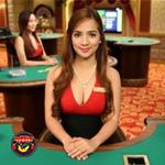 Live casino en software spellen