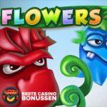 Flowers Valentijn bonus