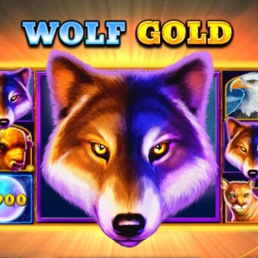 MrPlay Wolf Gold