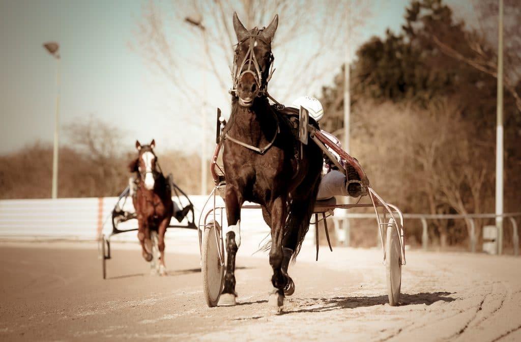 Paardenraces met een sulky zijn ook populair