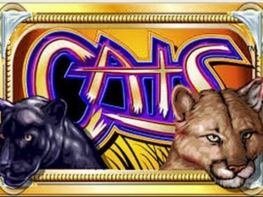 Cats videoslot