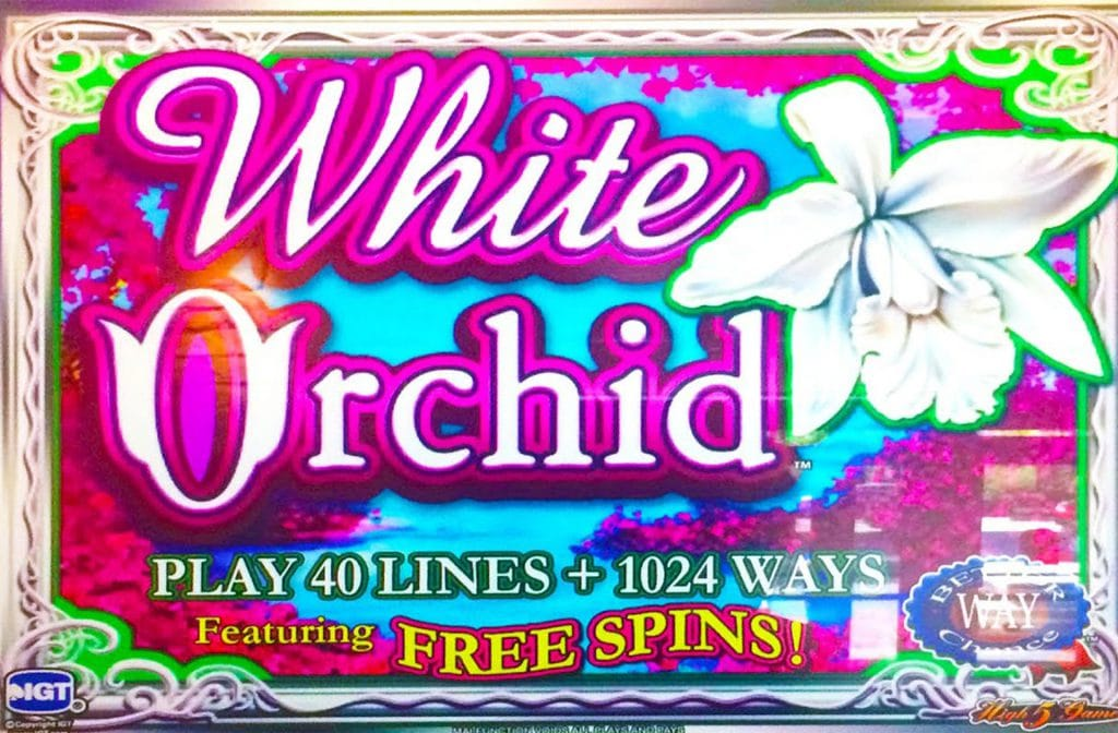 White Orchid van IGT