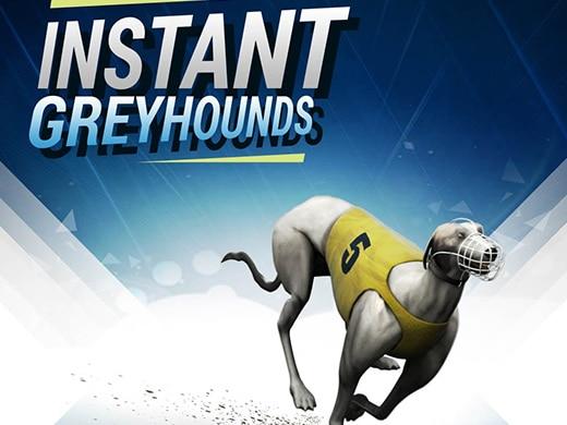 Instant Virtual Greyhounds Afbeelding Uitgelicht
