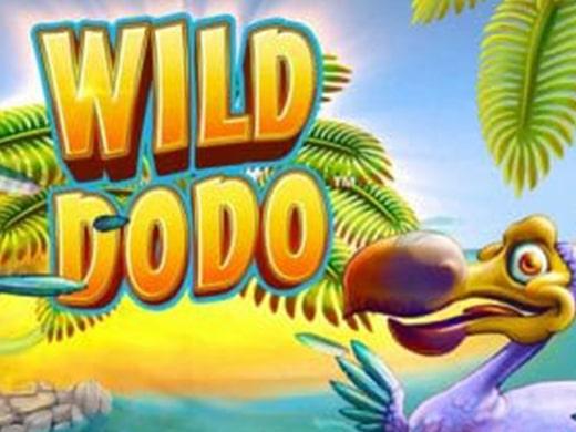 Wild Dodo logo2