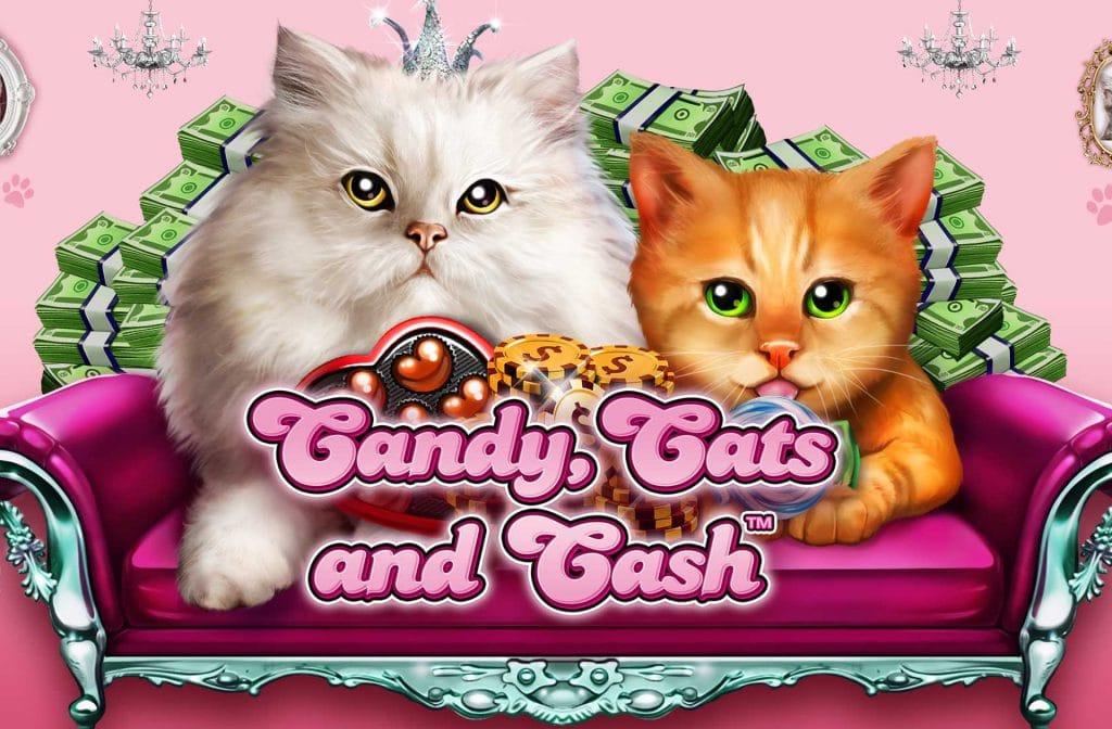 Een bekend spel van Wild Streak Gaming is Candy, Cats en Cash