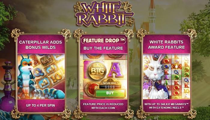 Buy Bonus Feature bij White Rabbit