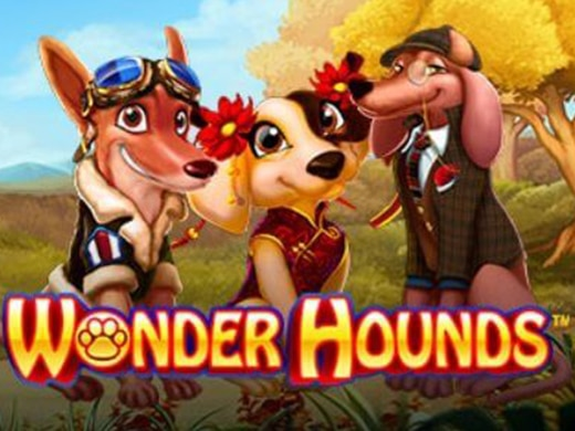 Wonder Hounds Logo1