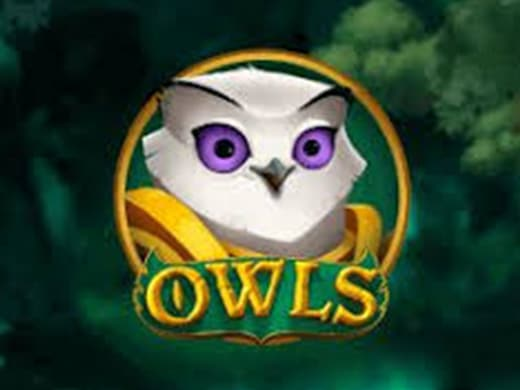 Owls Nolimit City Slot logo1