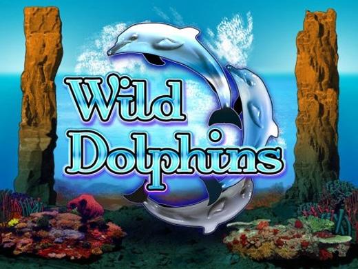 Wild Dolphins Logo