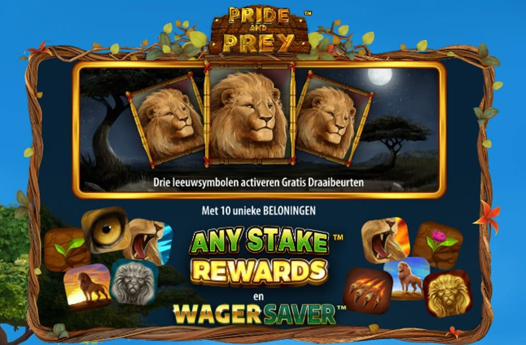 Draai je 3 of meer Scatter symbolen, die je herkent aan de grote leeuw, dan activeer je de Free Spins Bonus