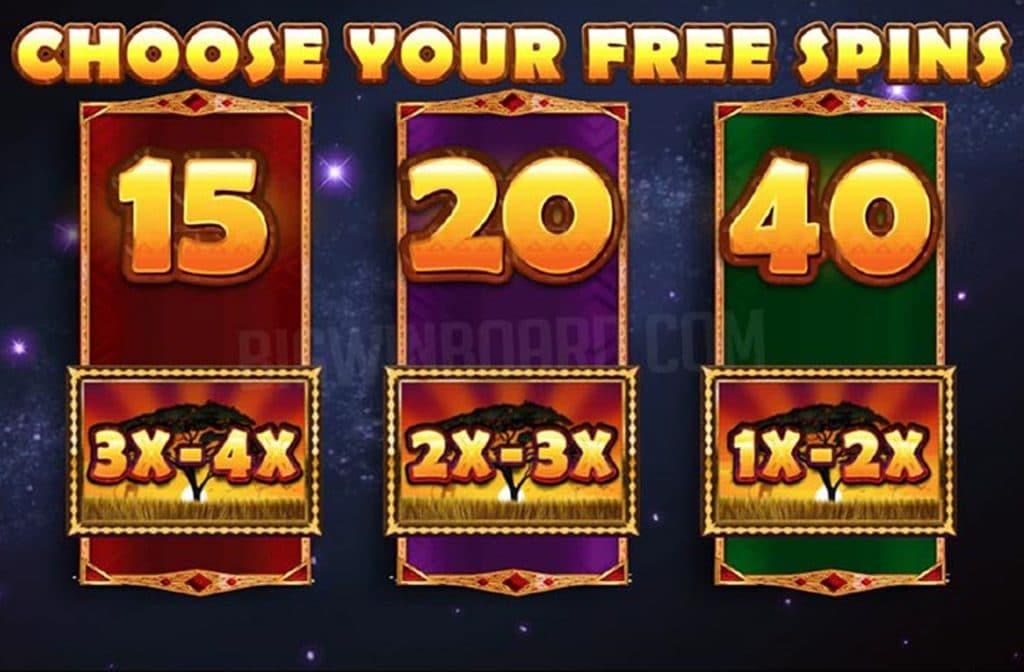 Door de free spins die je wint met de bonusfeature kun je extra geldprijzen winnen