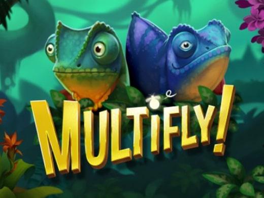 Multifly Logo