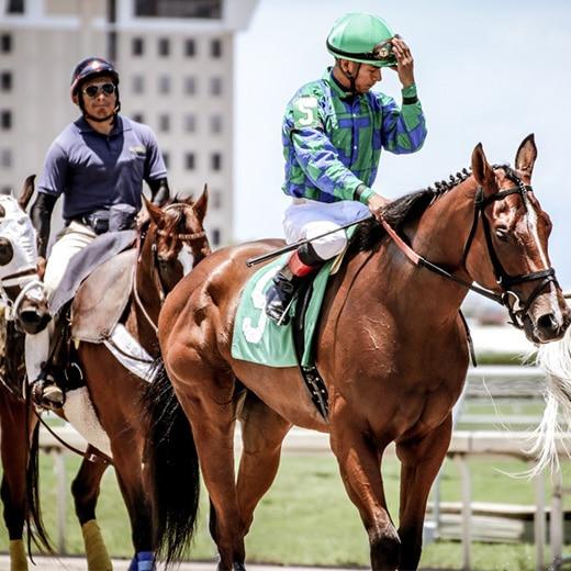 Beroemde Jockeys