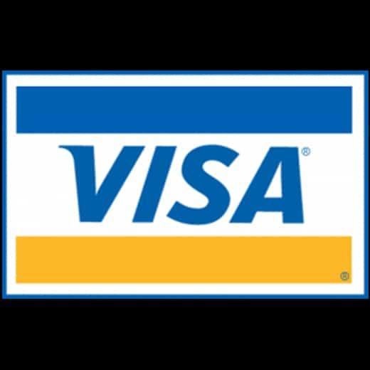 Visa Creditcard Logo groot