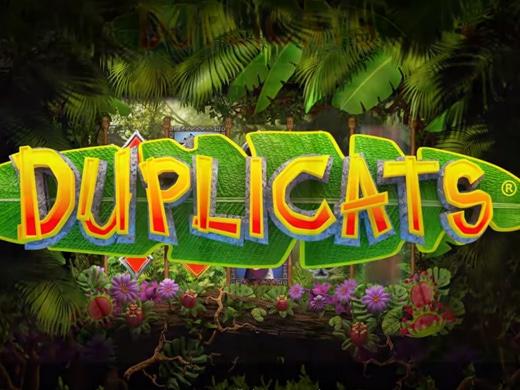 Duplicats Logo