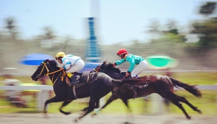 Gokken op paarden gaat vooral in risico inschatting