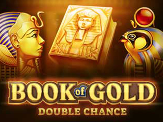 Book of Gold Double Chance Playson2