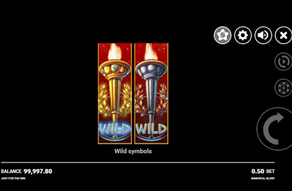 Er zijn diverse bonussen in het spel verwerkt die voor mooie geldprijzen kunnen zorgen