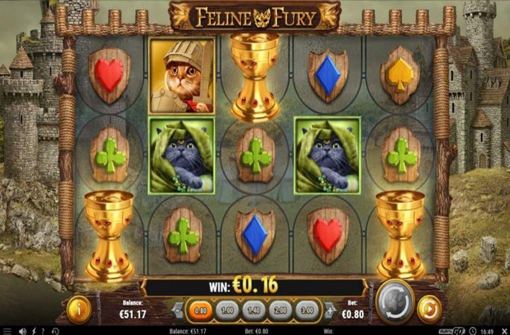 Spelprovider Play'n GO heeft de Feline Fury gokkast ontwikkeld