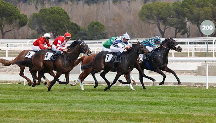 BCB Paardenrace
